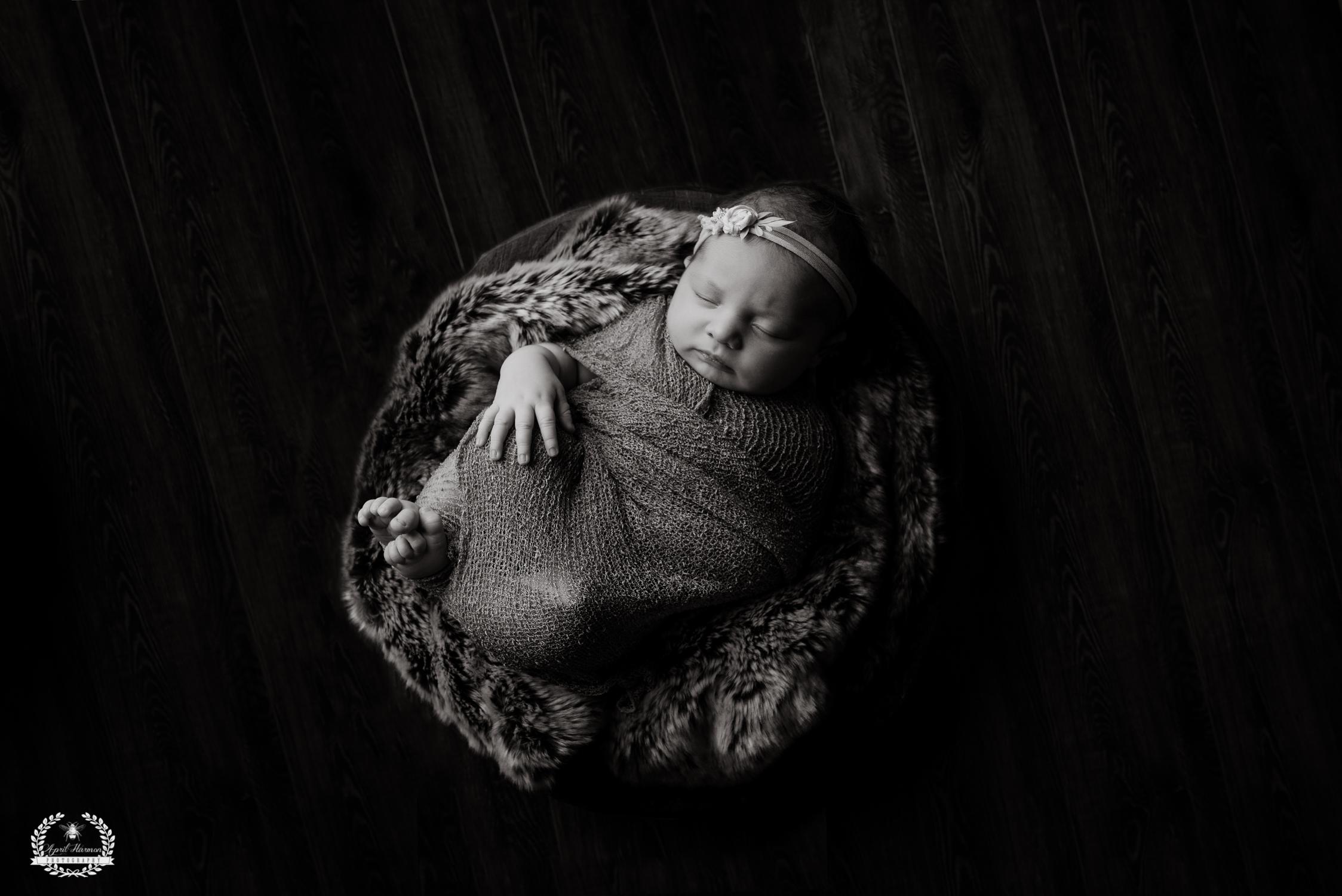 southwest-kansas-newborn-photography28.jpg