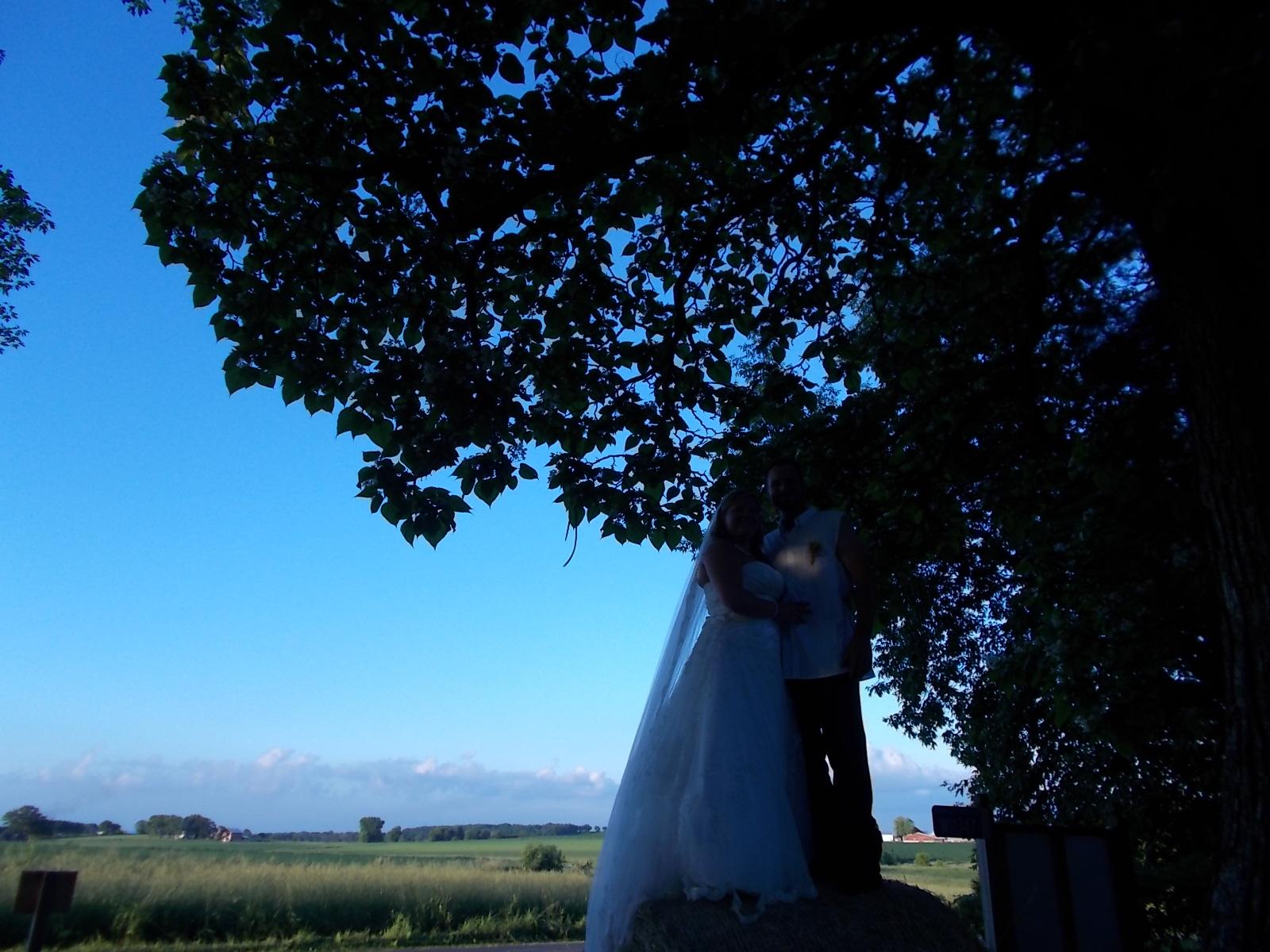 6-28 wedding 015.JPG
