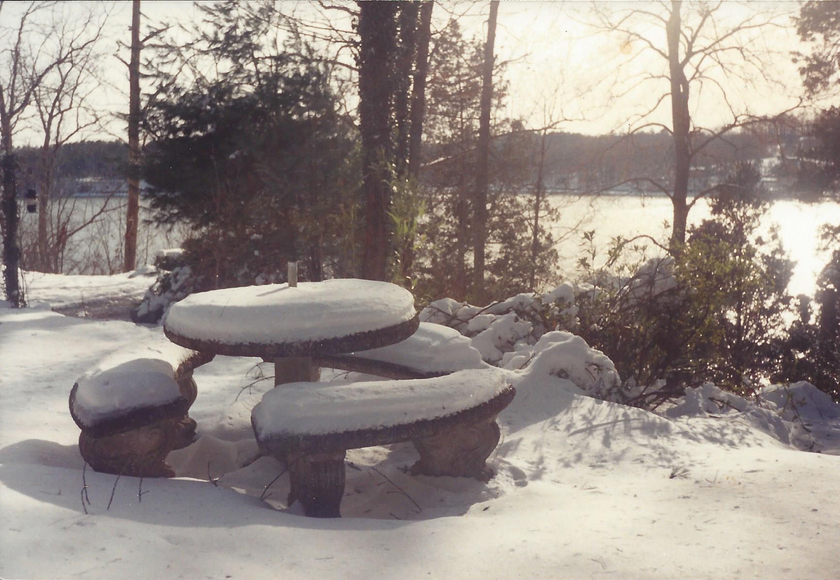 Winter2 1993.jpg