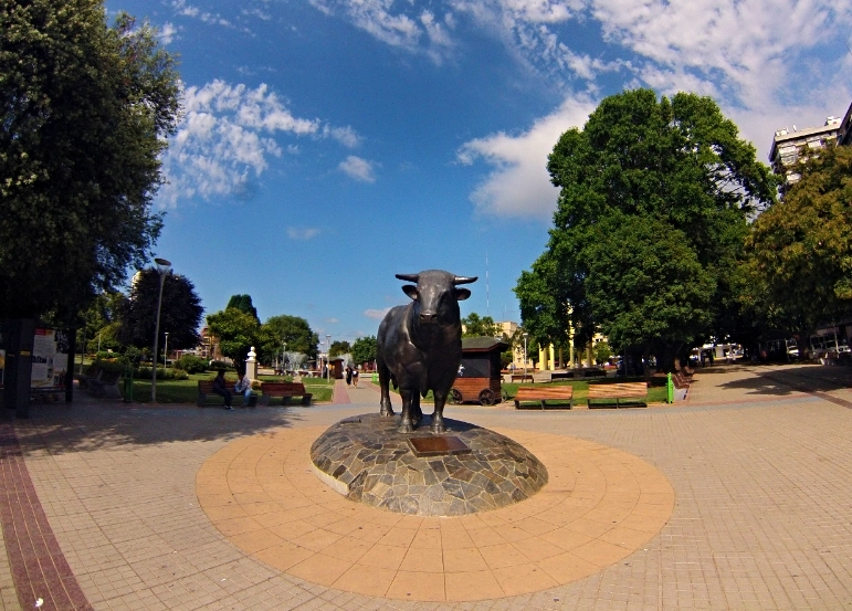 The bull of Osorno. There were signs around the plaza for the annual milk and meat festival, which sounded absolutely divine but unfortunately I was a couple of weeks early : (