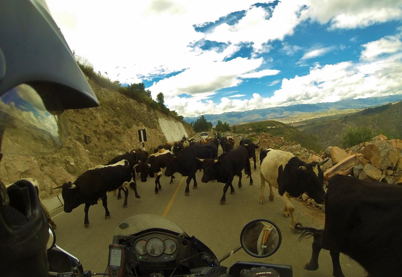 Ayacucho welcome wagon