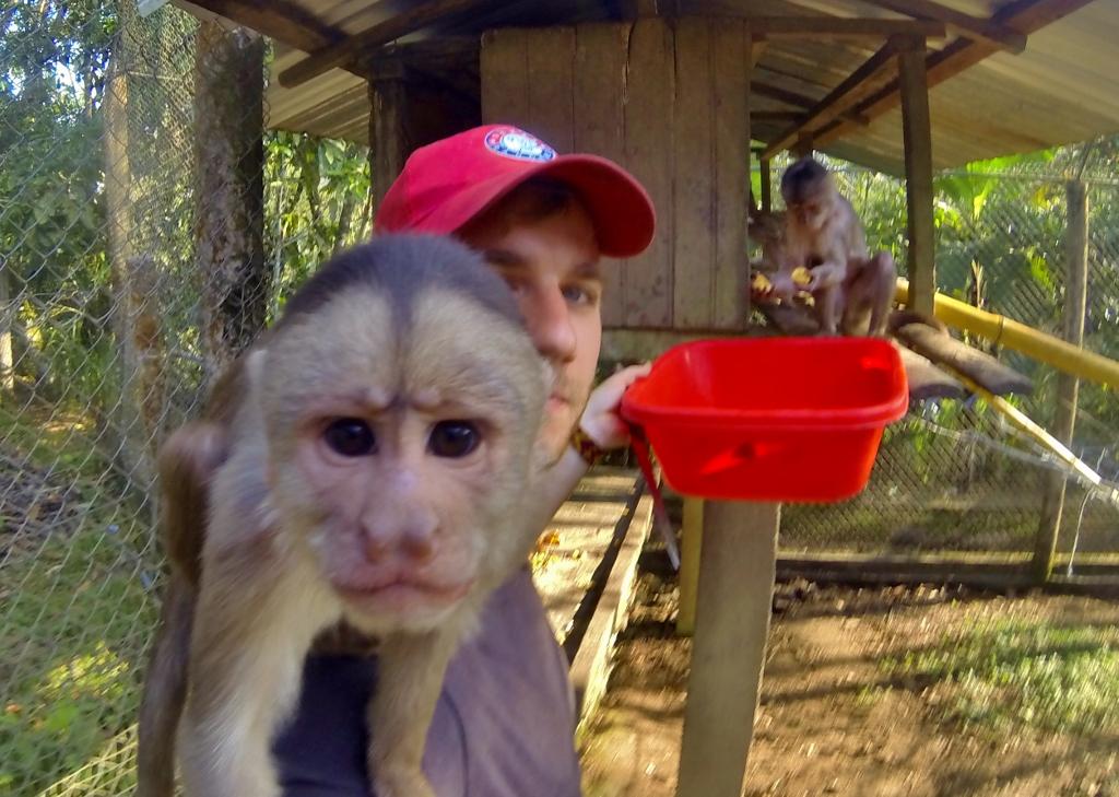 Capuchin Monkey wants a pic