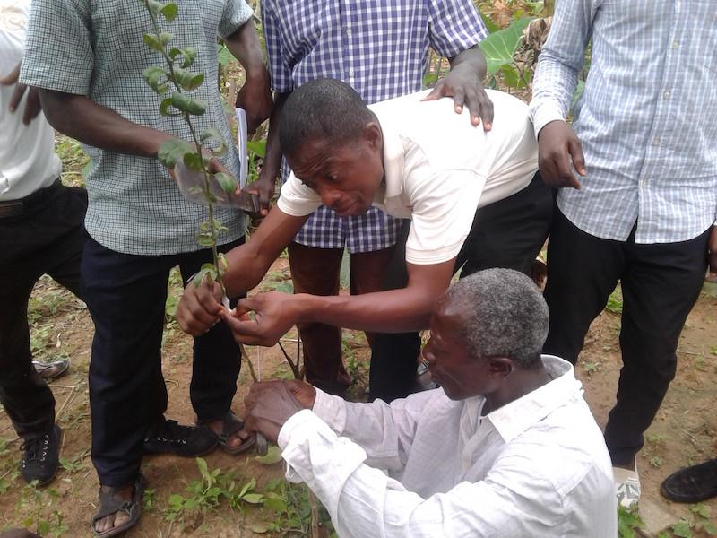 Accra 1.jpg