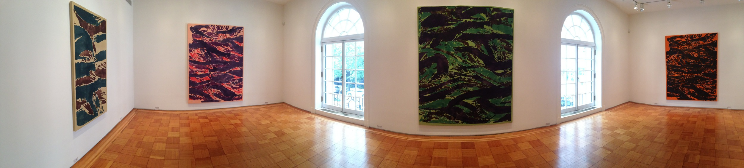 Exhibition Image,  Tigris  ,  Skarstedt Gallery, New York Photo Credit: Cincala Art Advisory