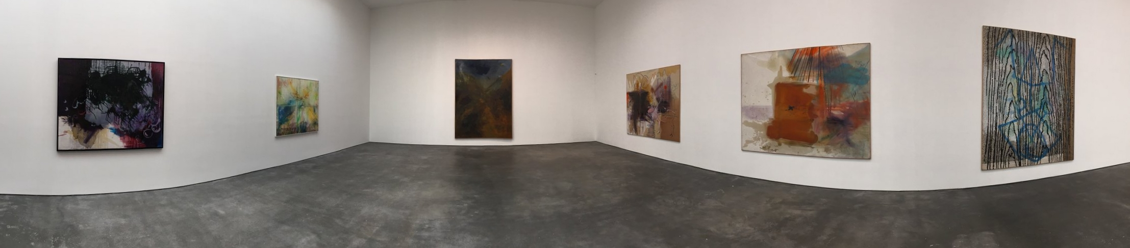 Exhibition Images, Sigmar Polke,  Eine Winterreise,  David Zwirner Gallery, New York Photo Credits: Cincala Art Advisory