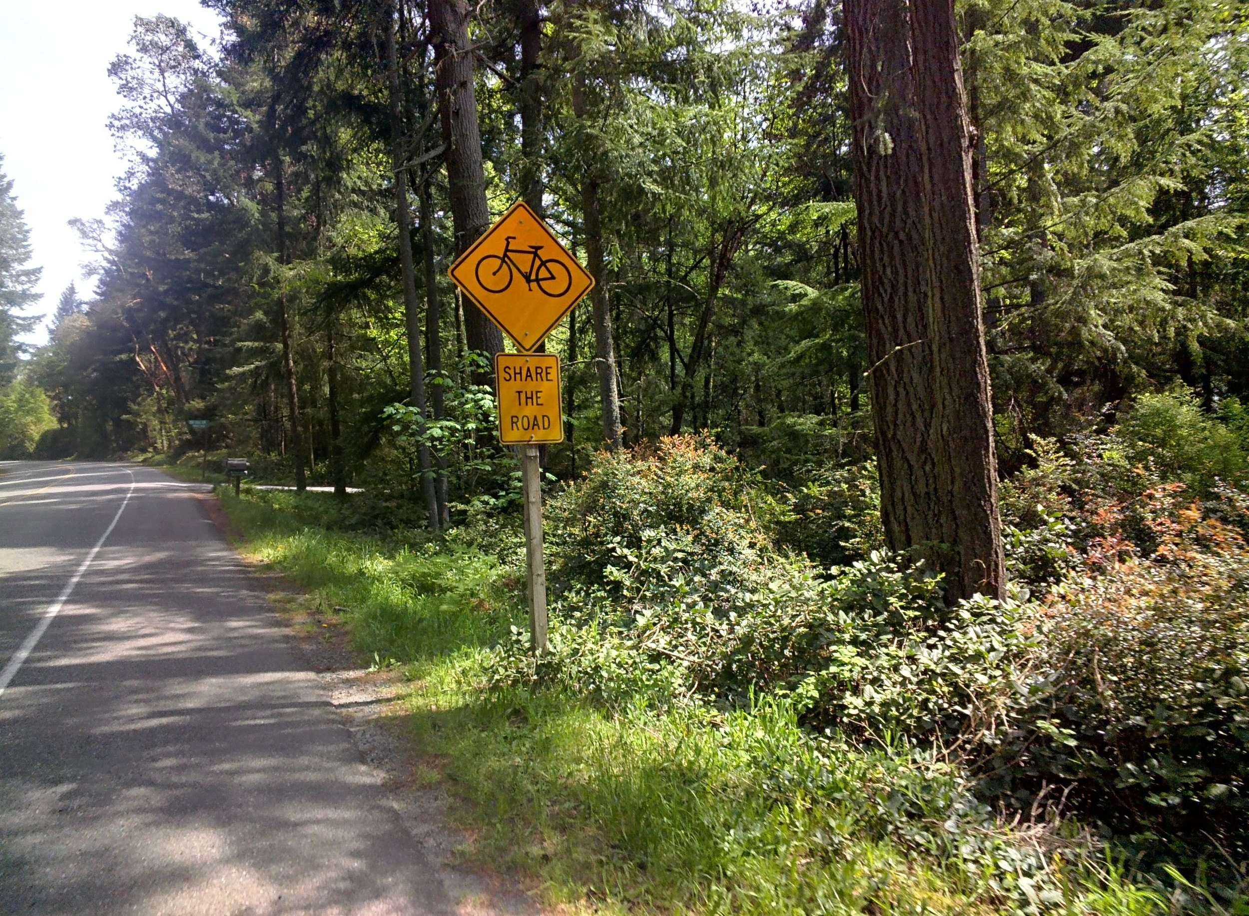 drivers actually heed the sign's advice on Vashon