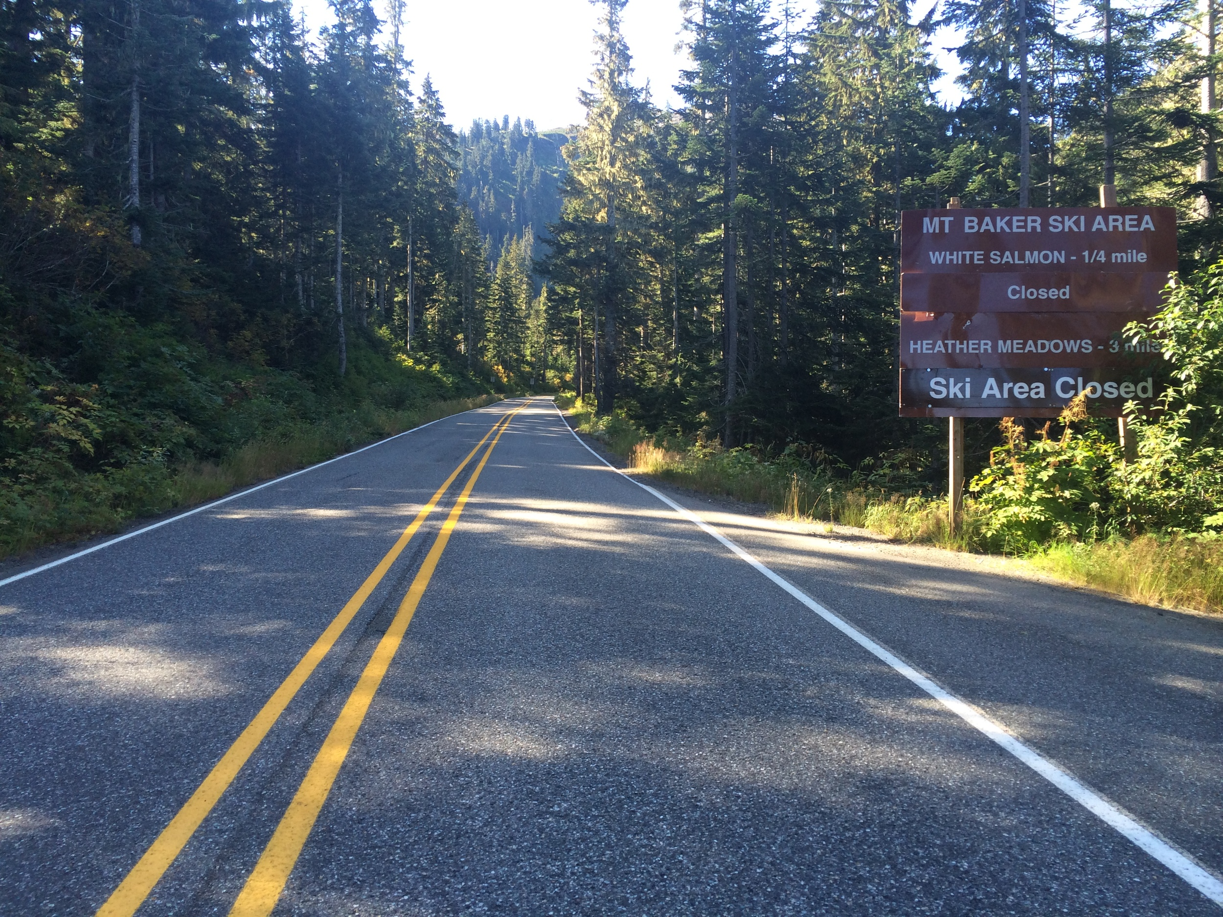 The road to Mt. Baker. Not a car in sight.