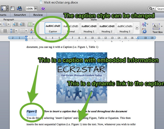 Captions & Figures in MS Word