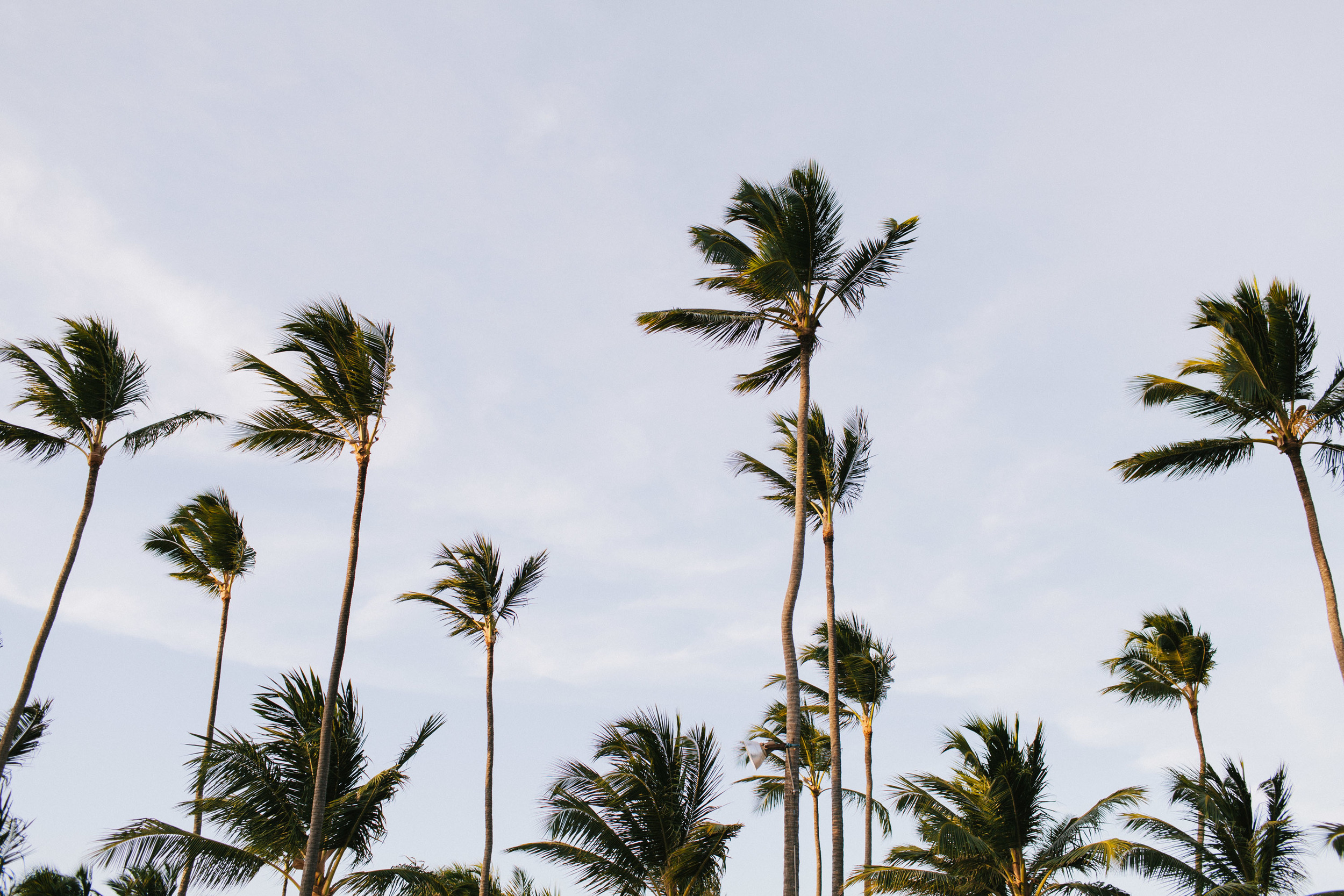 michael-rousseau-photography-dominican-republic-destination-wedding-cara-jason-colonial-majestic-dominican-republic060.jpg