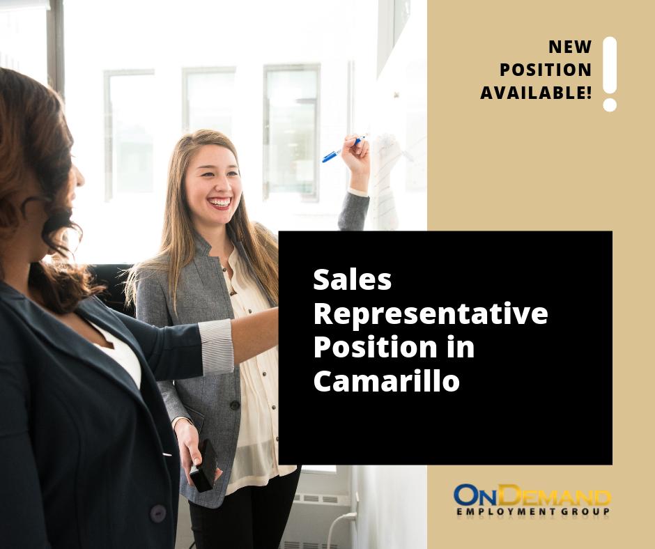 2019.04.11 Sales Representative.png