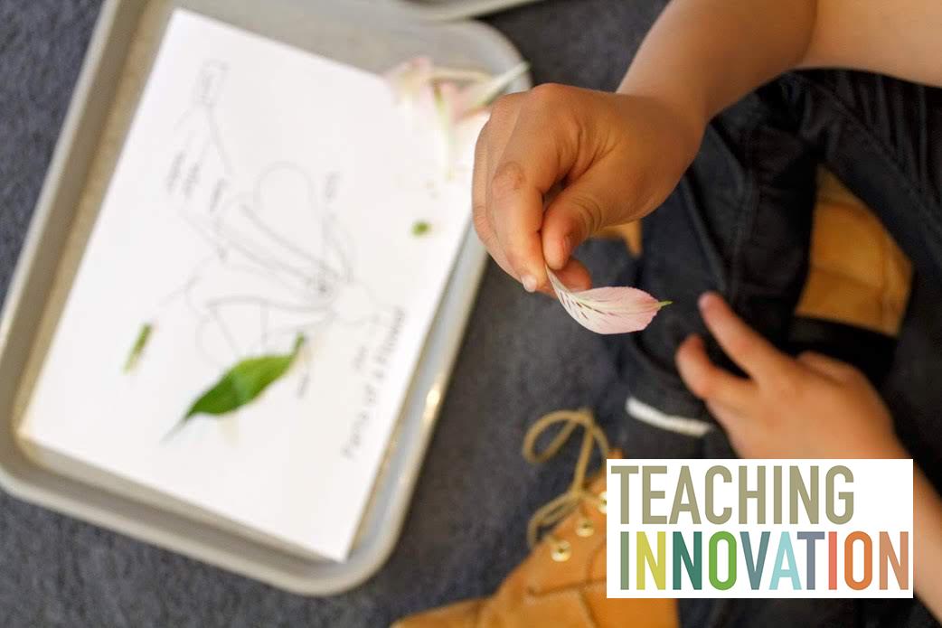 Teaching_innovation_fb_ad.jpg