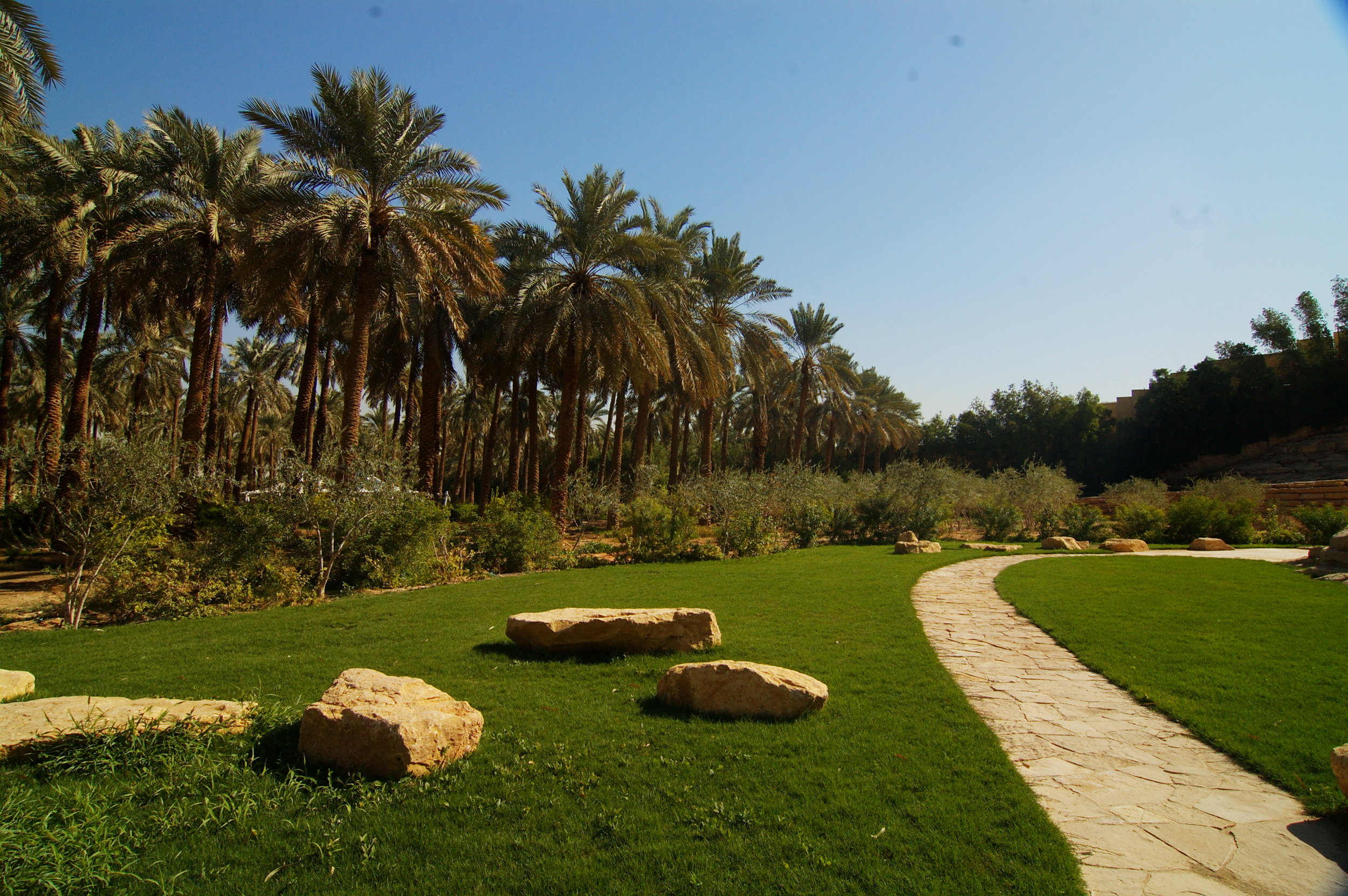 Faisal Dec 2011Faisal Al Muammar - 15.jpg