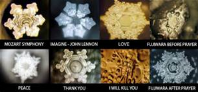 Examples of Dr. Emoto's work.
