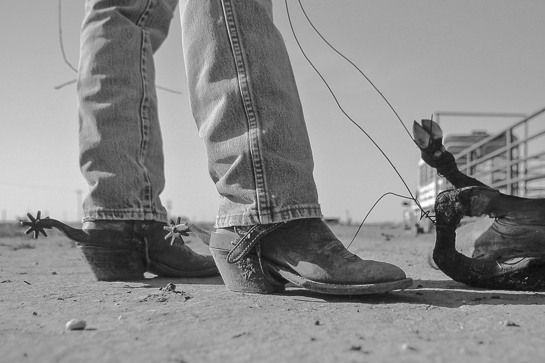 Real Cowboys, Southern New Mexico