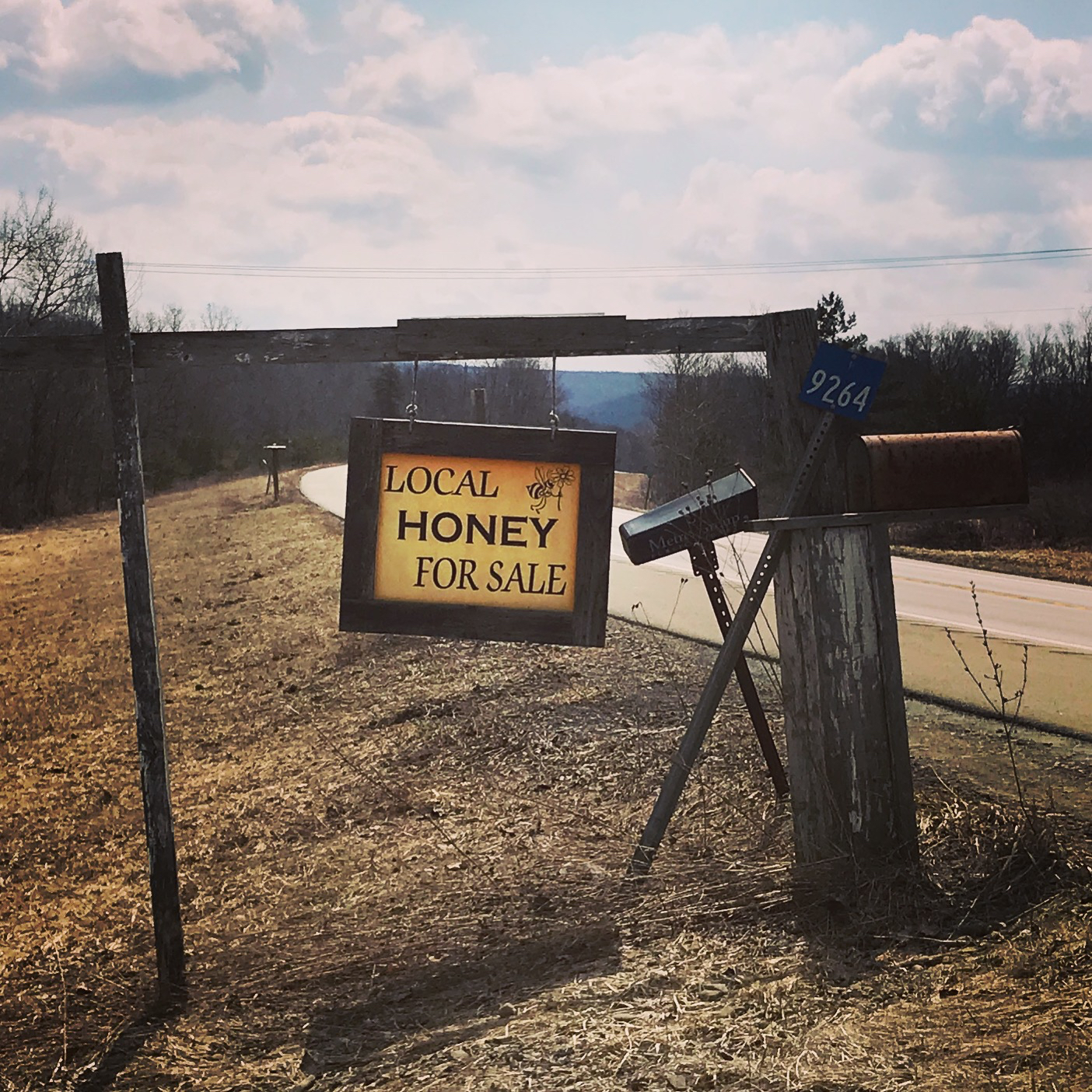 So far we have used over half a ton of local honey to make our One Foot Cock Krupnik - that is a lot of honey!