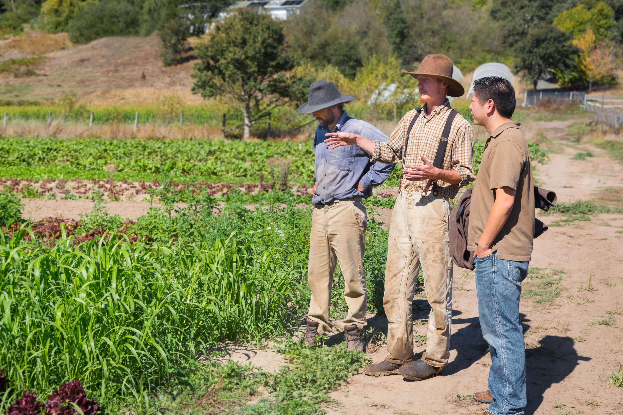 Anthony Chang (left) meeting with Farmers Ryan and Adam of New Family Farm. Photo by Jonathan Fong.