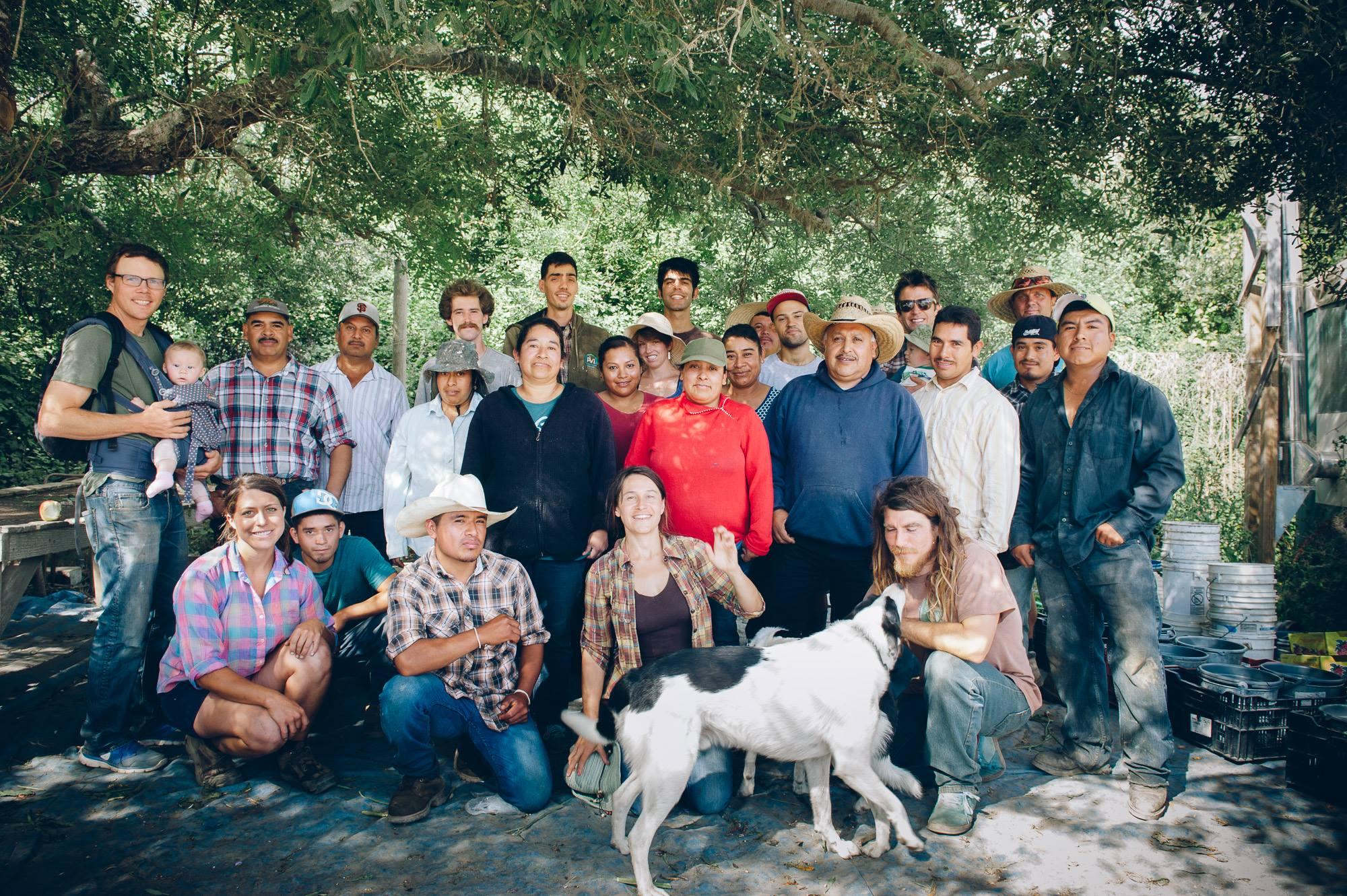 Bay Area farm: Fifth Crow Farm