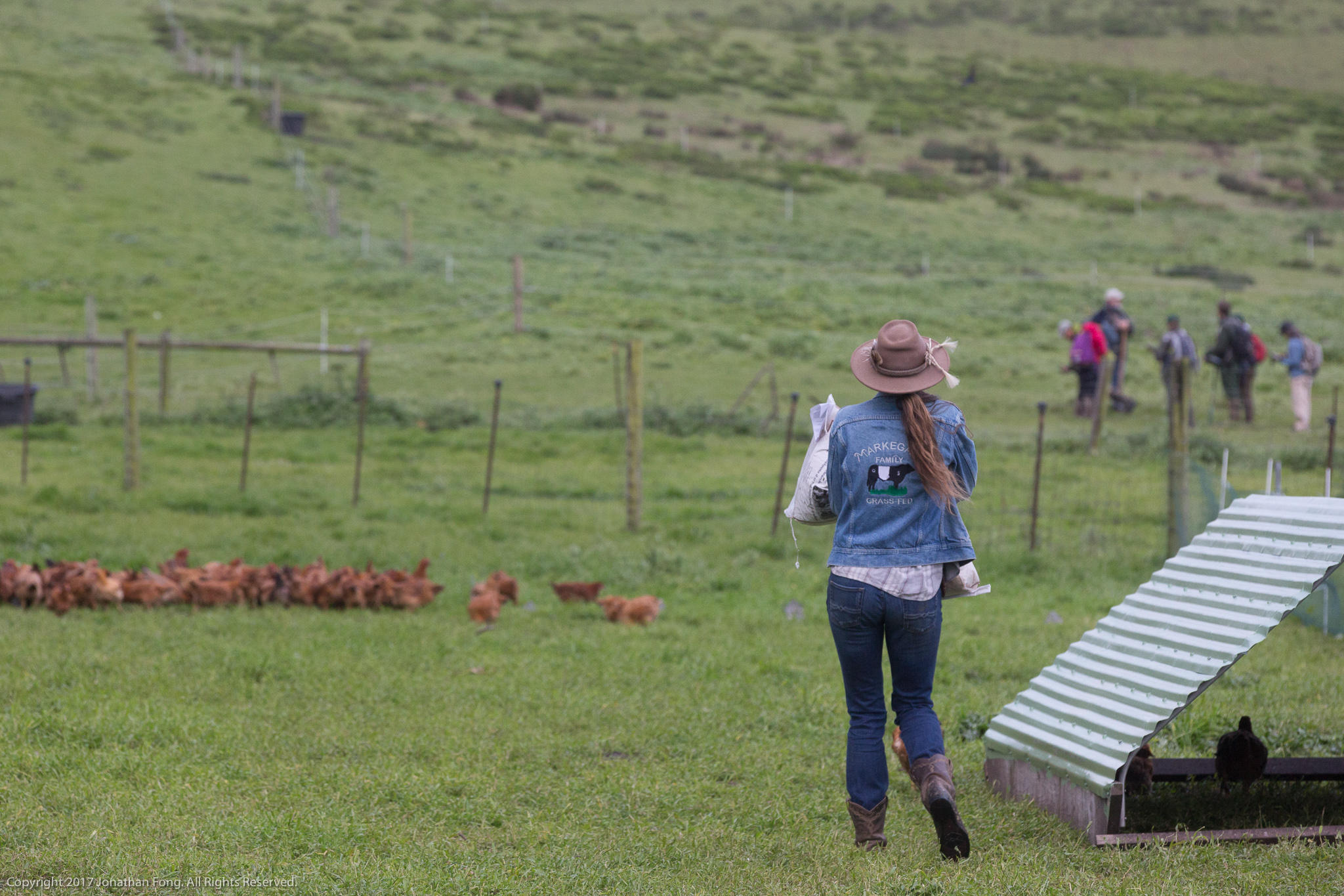 The Markegards run a diverse operation, supplementing their grass-fed cattle with milk cows, grassfed lamb, chickens and pigs. This diversity is key to achieving business viability and success, as are team members, like Sue here, who support Doniga and Erik with operations on the ranch.