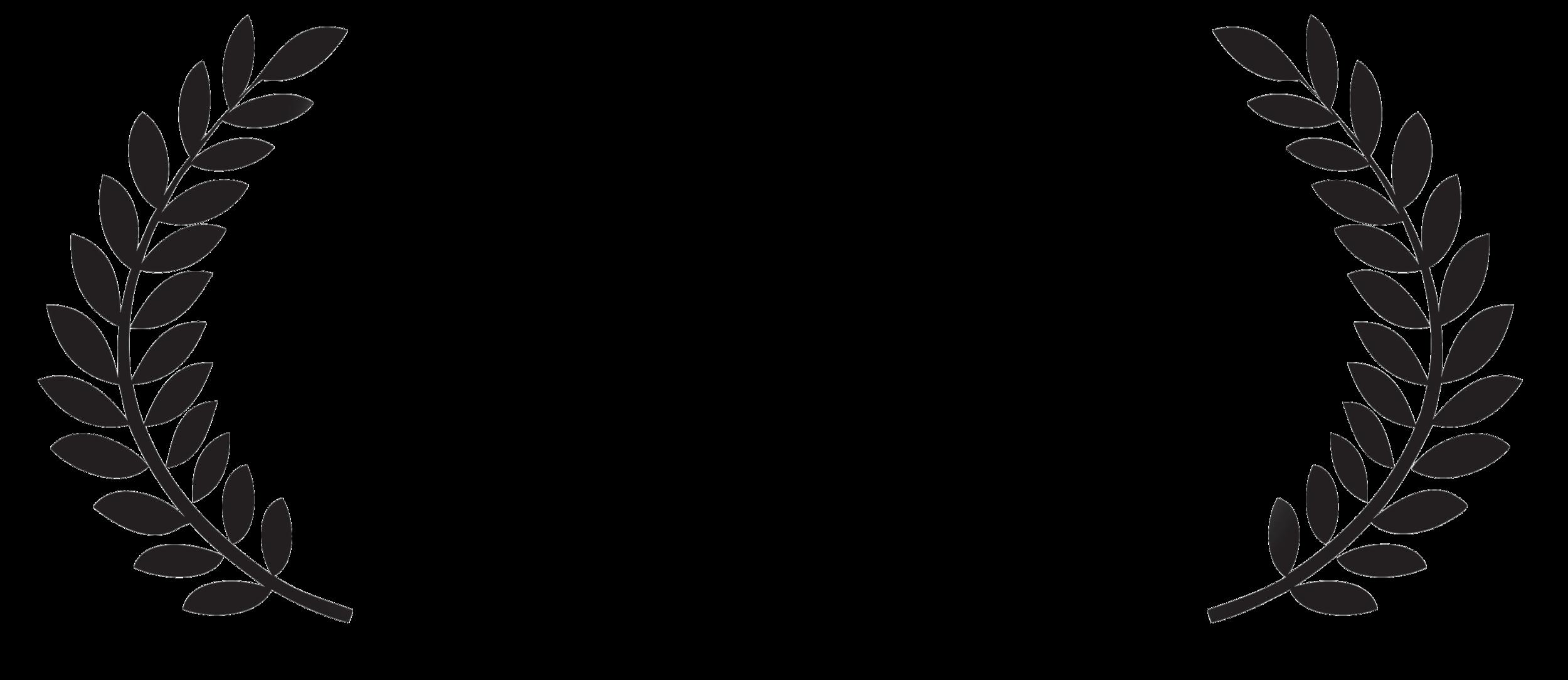 dga_2012.png