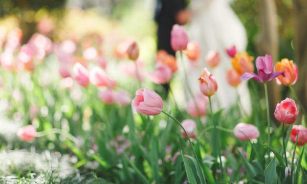 dallas-aboretum-wedding-grit-and-gold11-600x360.jpg