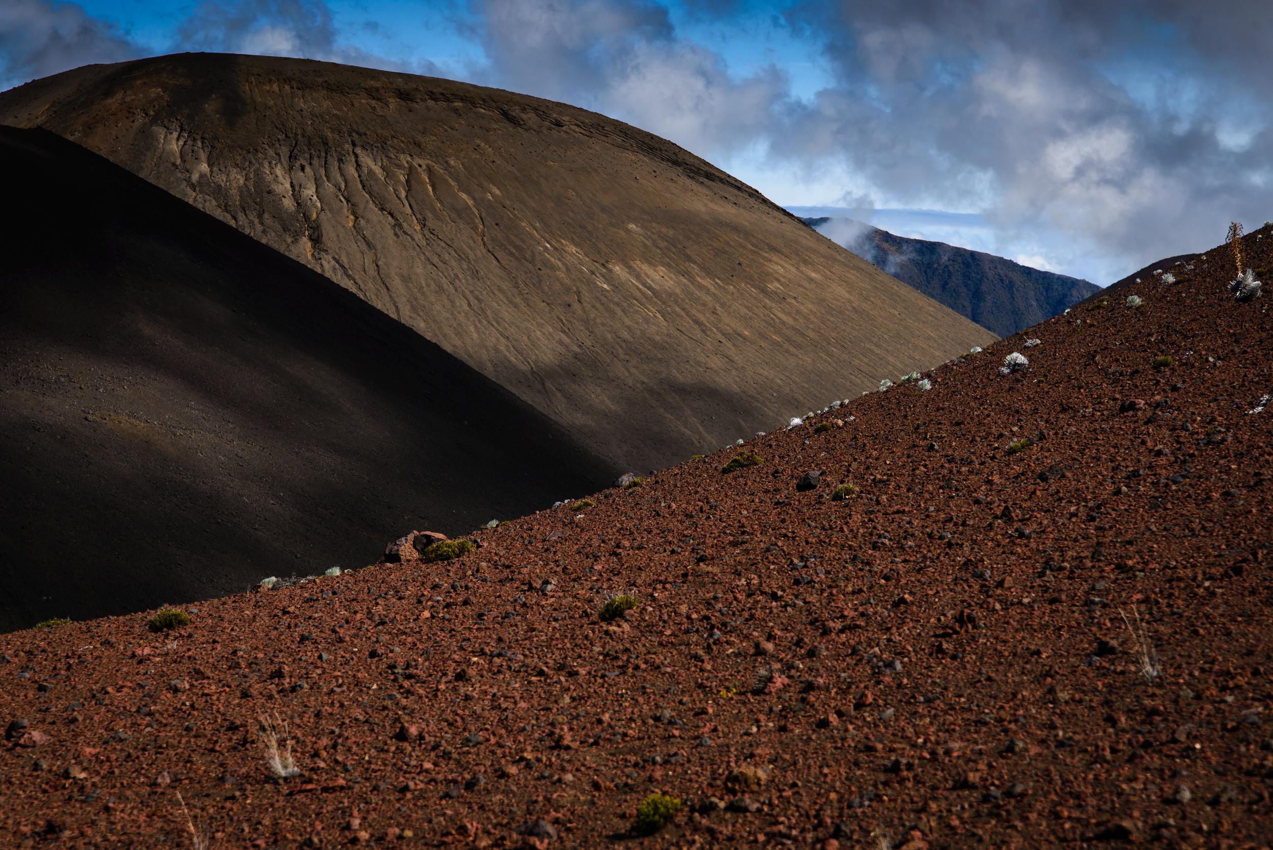 PLP_Hawaii_2014-5.jpg