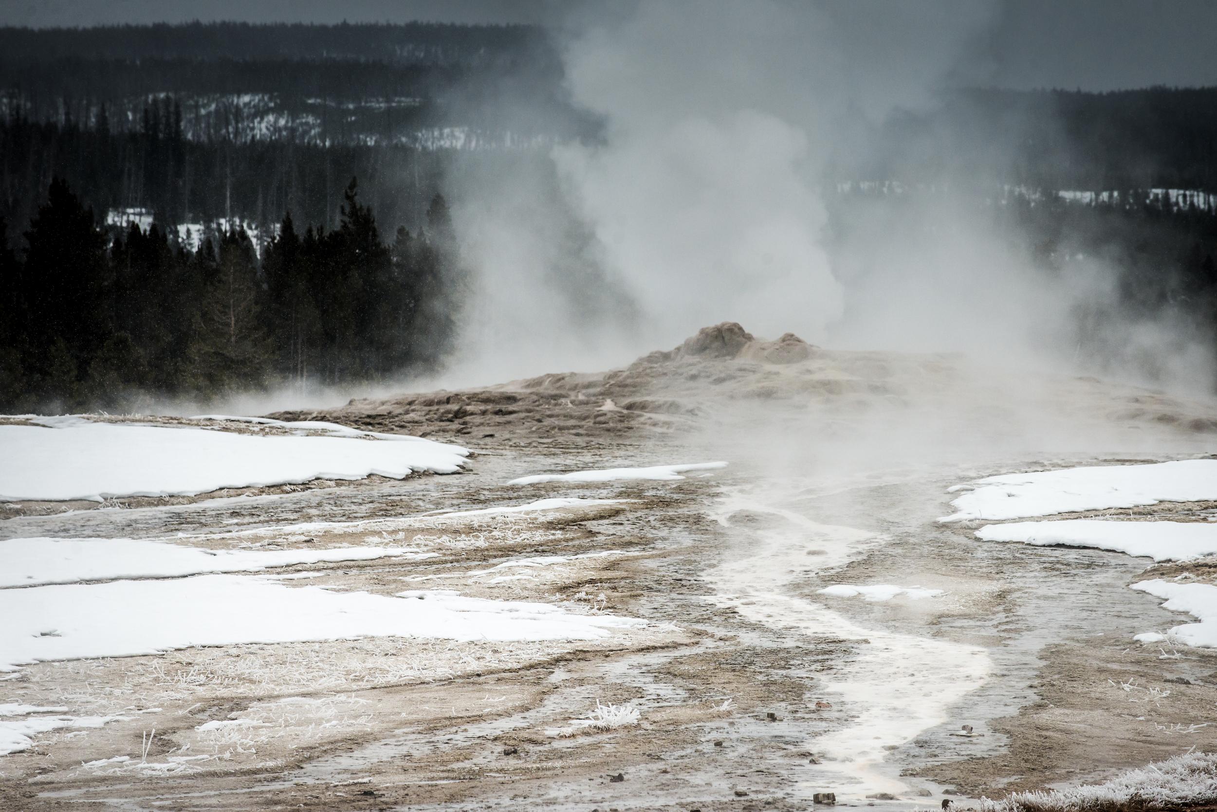 PLP_Yellowstone_2014-26.jpg