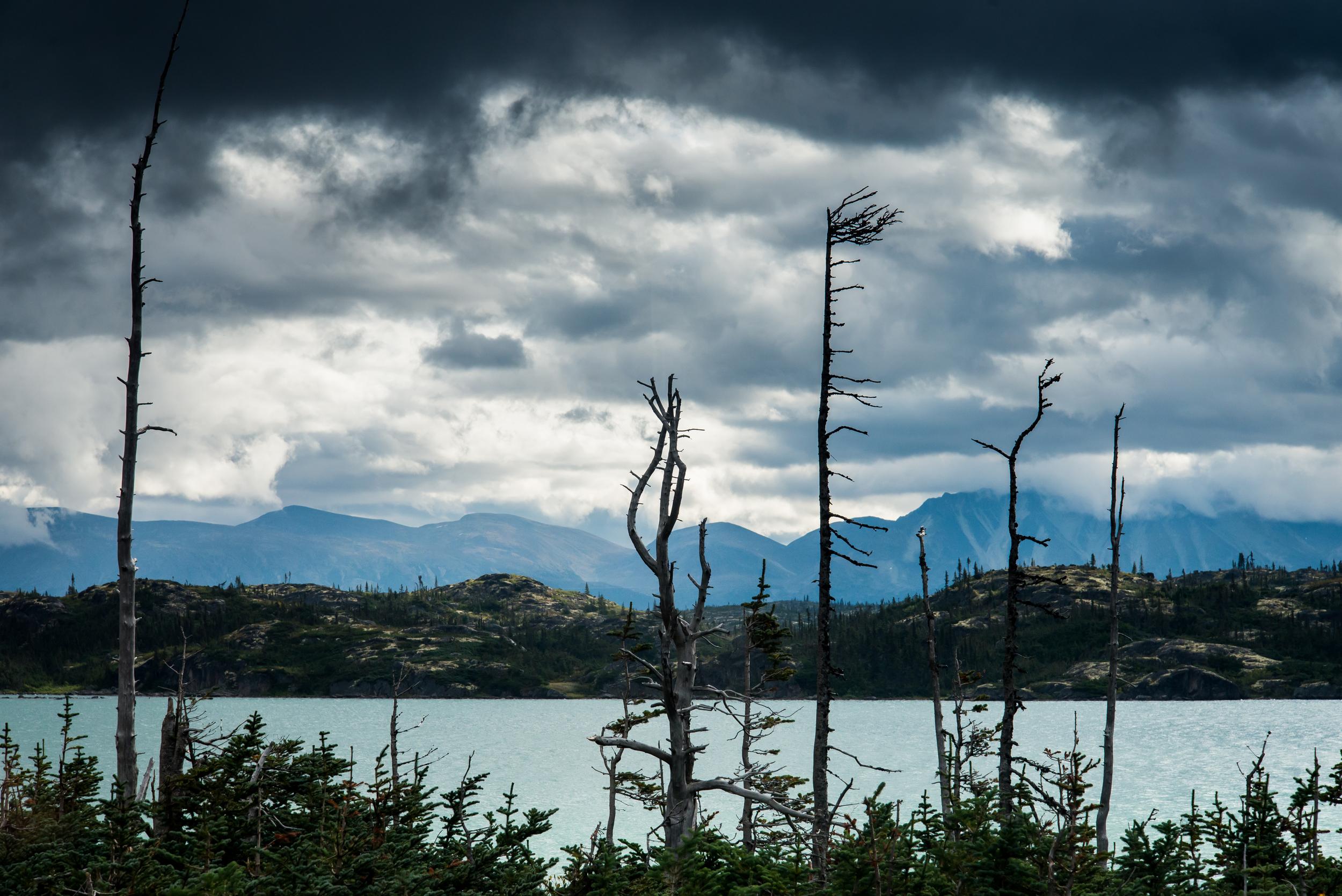 PLP_Alaska_2013-11.jpg