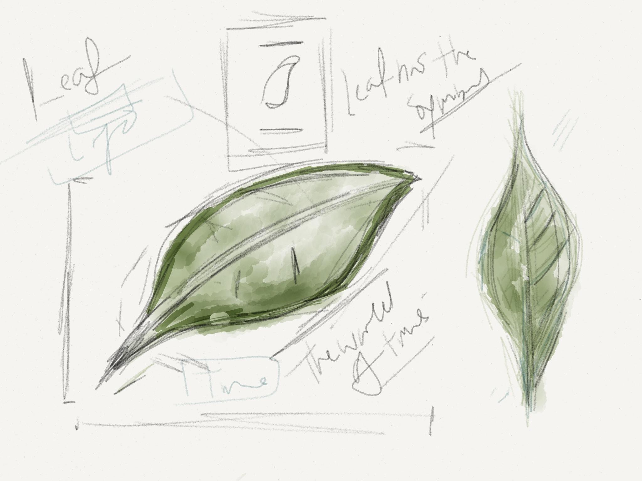 sketch71.jpg