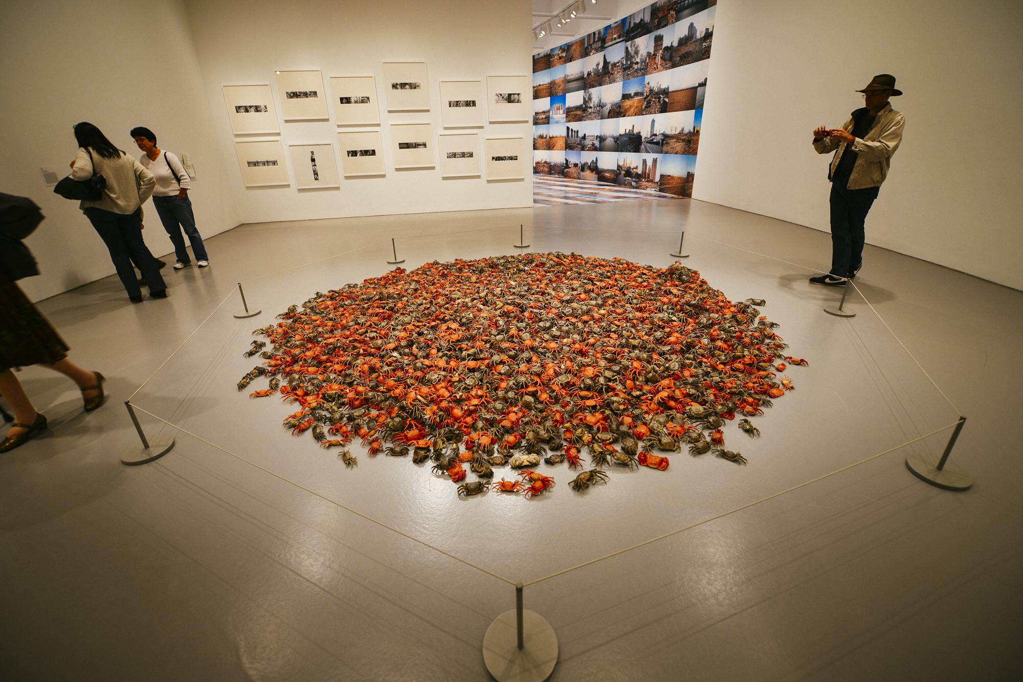 """Ai Weiwei, """"He Xie"""" (2010- ), 3,200 porcelain crabs"""