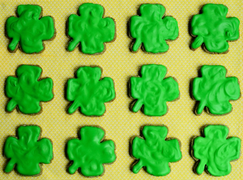 Clover Cookie Adventure | Seed Plant Water Grow