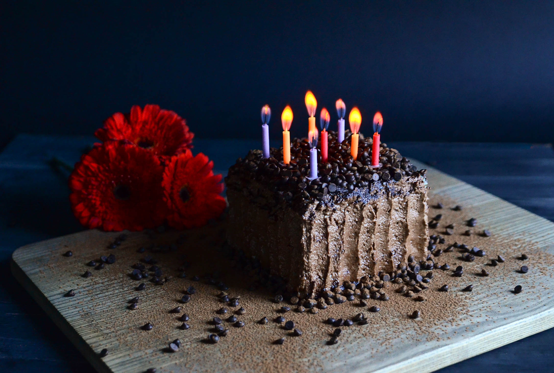 Chocolate Dream Birthday Cake(Vegan & GF) | Seed Plant Water Grow