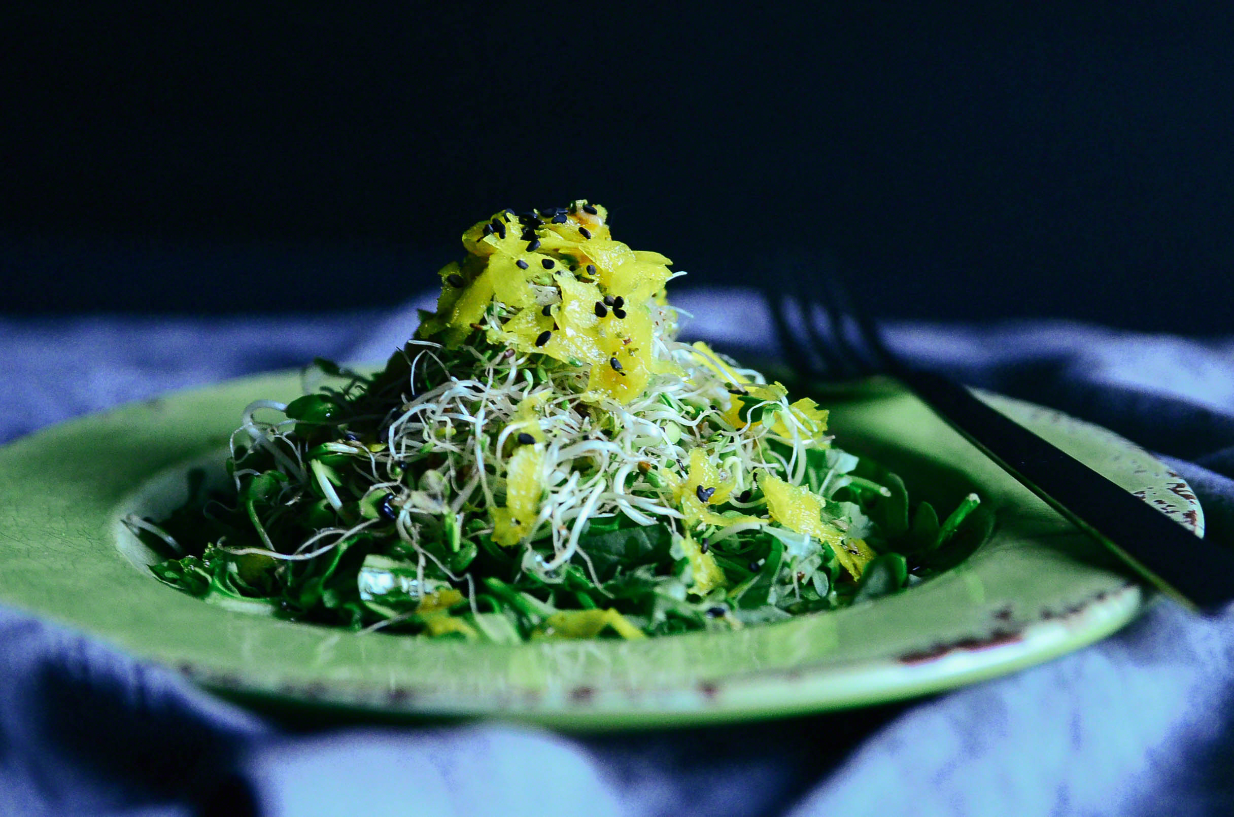 Homemade Alfalfa Sprout and Shaved Golden Beet Salad topped with Sesame Garlic Dressing