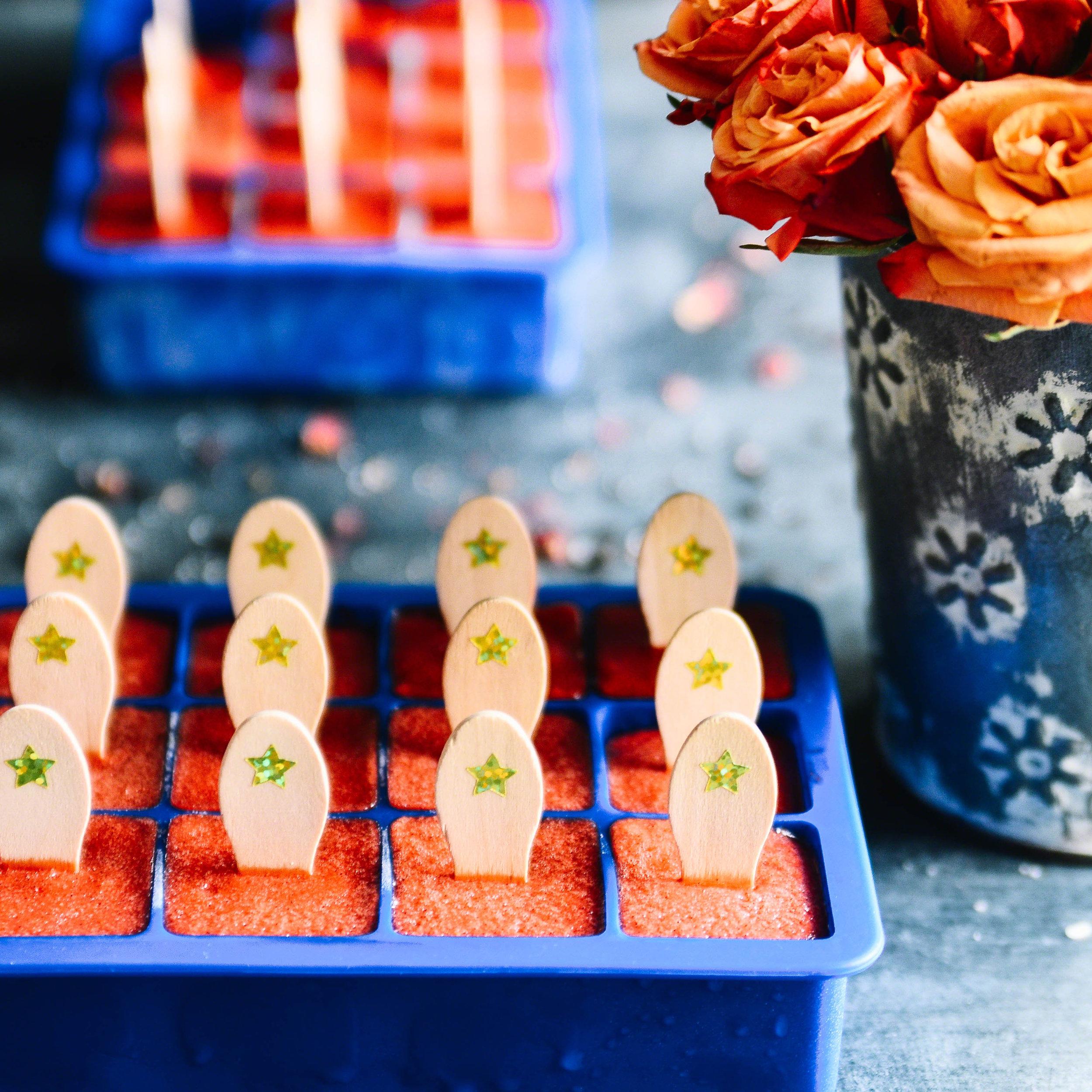 Mango Rose Vanilla Strawberry Square Mini Frozen Pops | Seed Plant Water Grow
