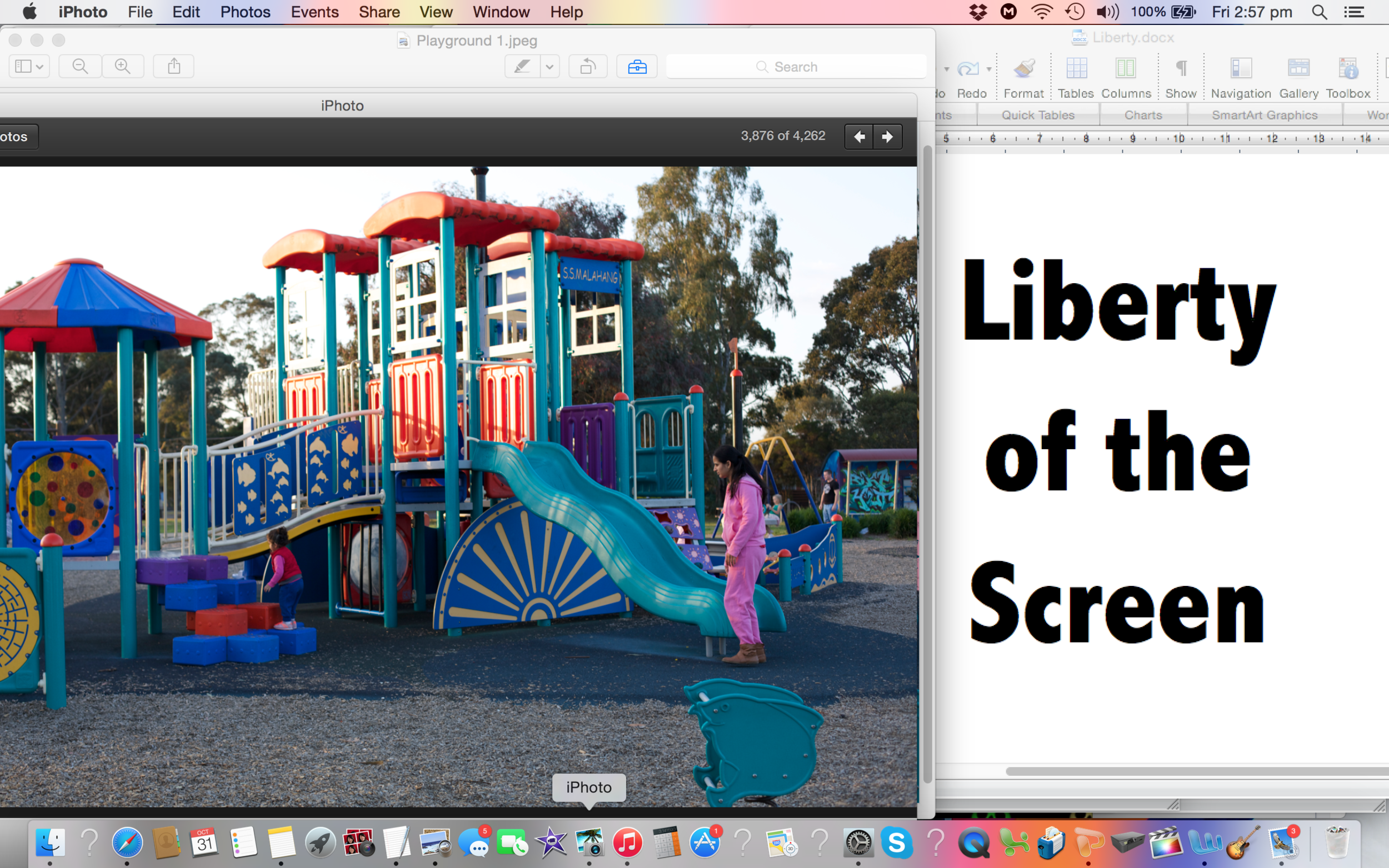 liberty plan sample.png