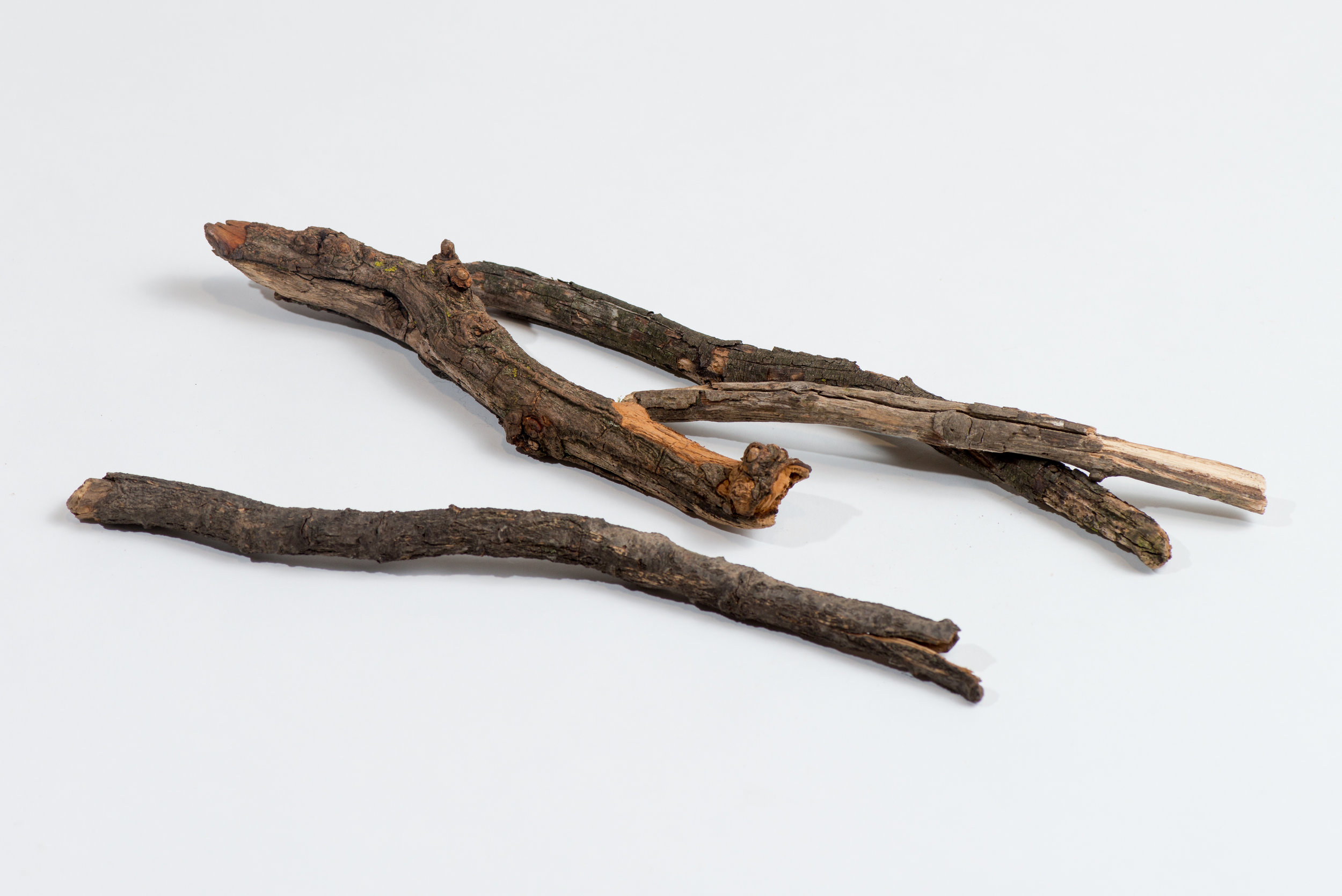 Kym Maxwell,  Medieval Tools: Swords and Guns from the Collection of the Museum of Anticipation at Dandenong Primary School (Site DPS various locations internal school grounds). Materials: sticks and branch, 2018, inkjet print, 30cms x 40cms.