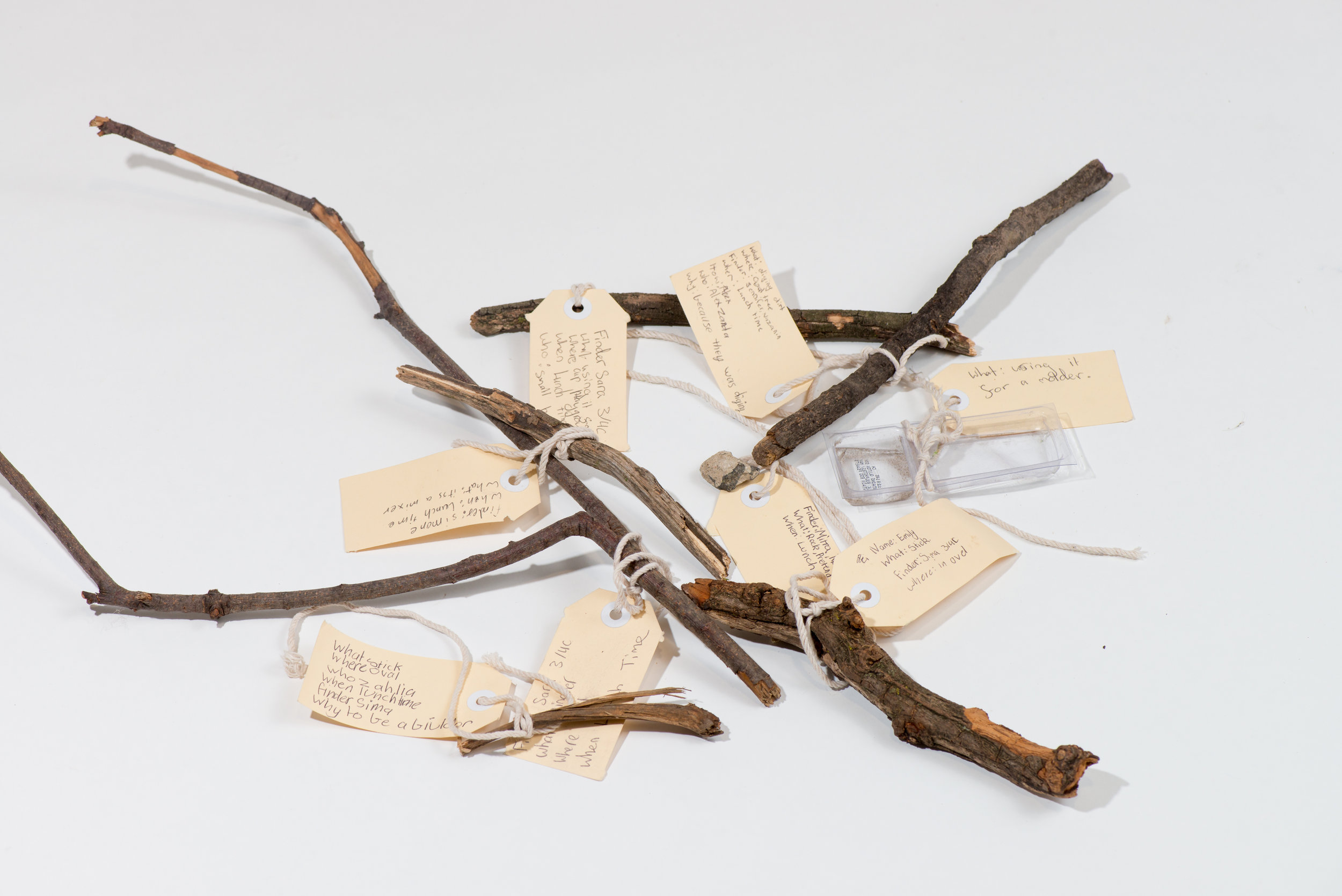 Kym Maxwell,  Collection of found yard materials with labels for the Museum of Anticipation at Dandenong Primary School (Site DPS various locations internal school grounds). Materials: sticks, branches, plastic container, 2018, inkjet print, 30cms x 40cms.