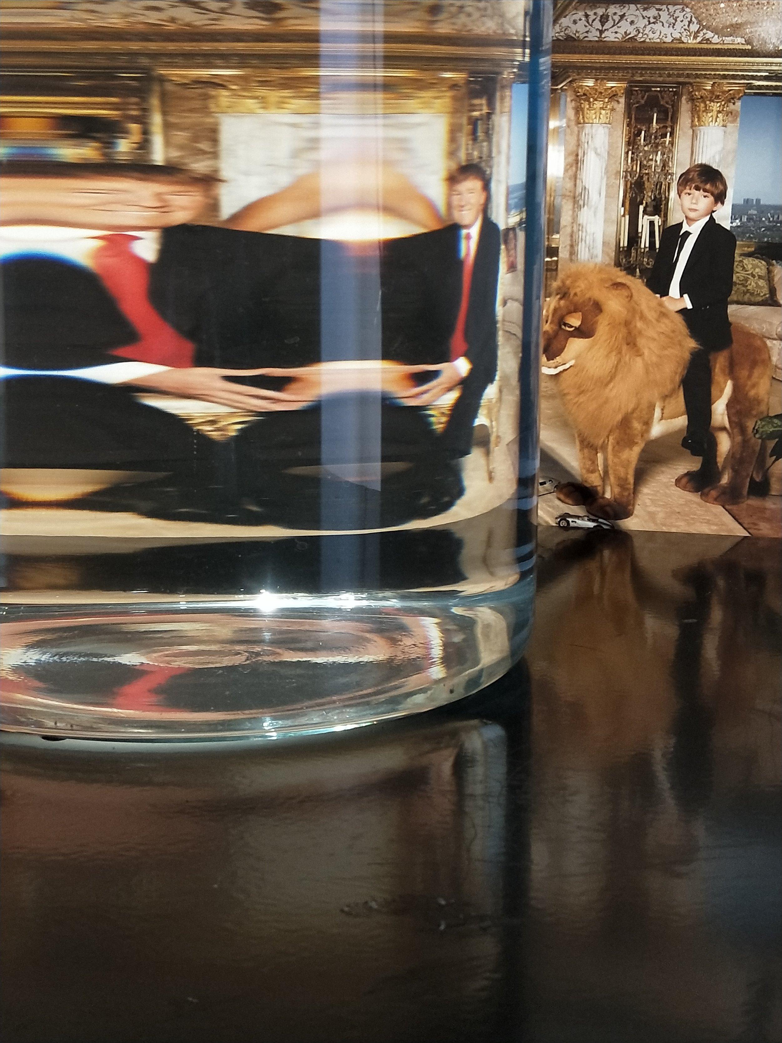 Refractive Errors: Trump's Family google image  2017, paint, steel, inkjet photograph on Museo Rag, google location  http://staging.snopes.com/app/uploads/2016/08/trump-family-portrait.jpg , water, glass vessel, light, 67cm x 45cm x 140mcm.
