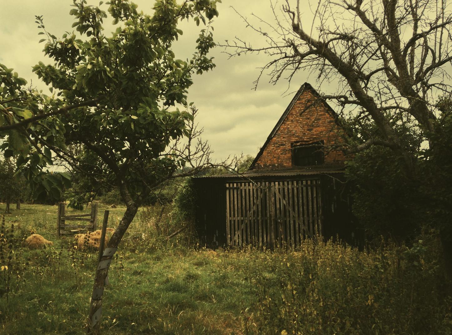 ciderhouse2.jpg