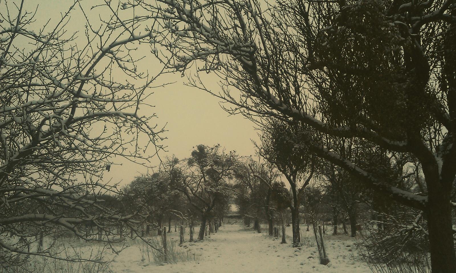 farm-snow.jpg