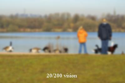 river_20_200.jpg
