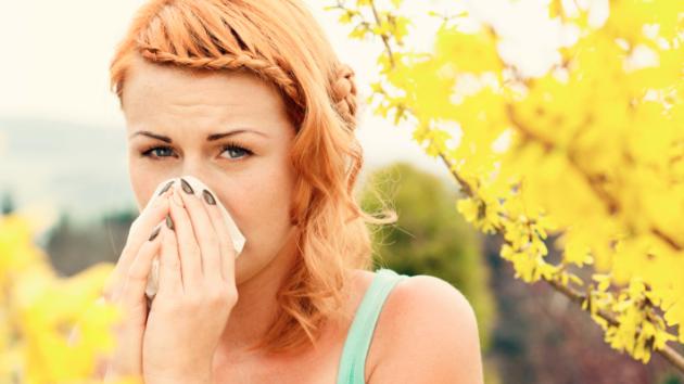 Nasal Allergies.png