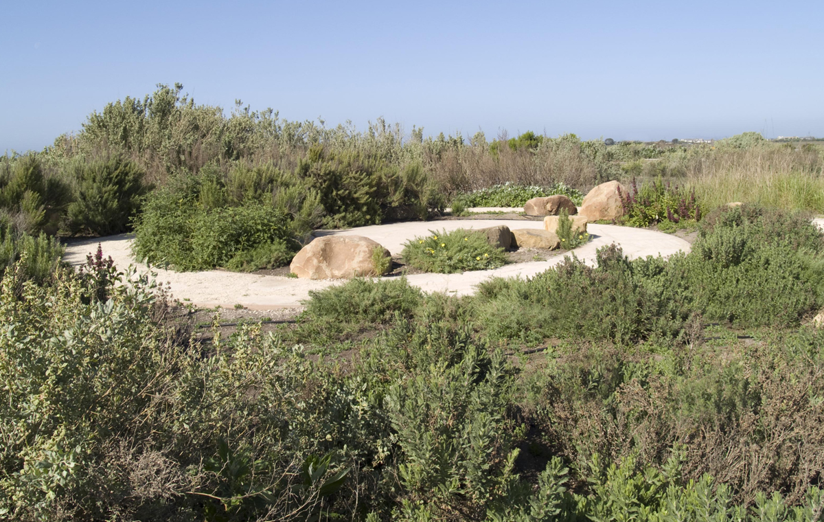 The lookout point at the Carpinteria Salt Marsh provides a view of this important estuarial habitat. Enviroscaping worked with landscape designer Susan Van Atta to create the crushed-lyme curlicue pathway shown here. From a central gathering area for groups, the pathway continues for approximately a half-mile along the marsh. The pathway, the rocks and the native plants were all installed by Enviroscaping.
