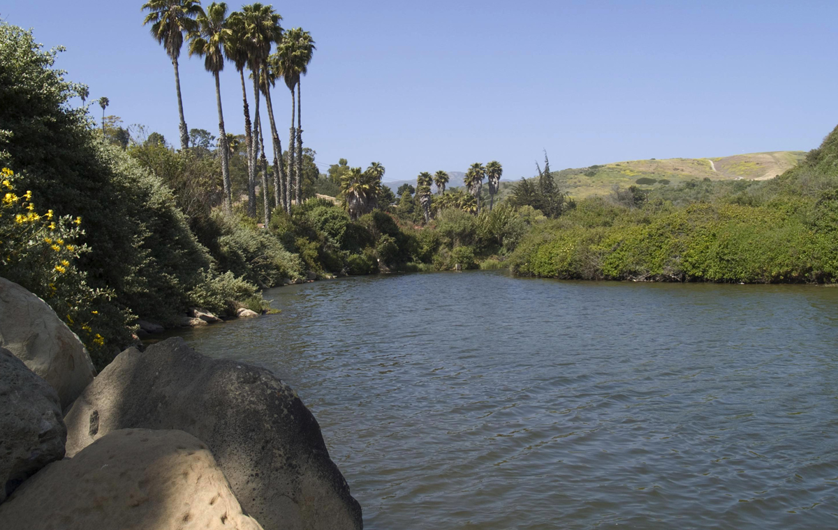 Arroyo Burro Creek Restoration, Project Clean Water, Clean Water Division, City of Santa Barbara Parks & Recreation.