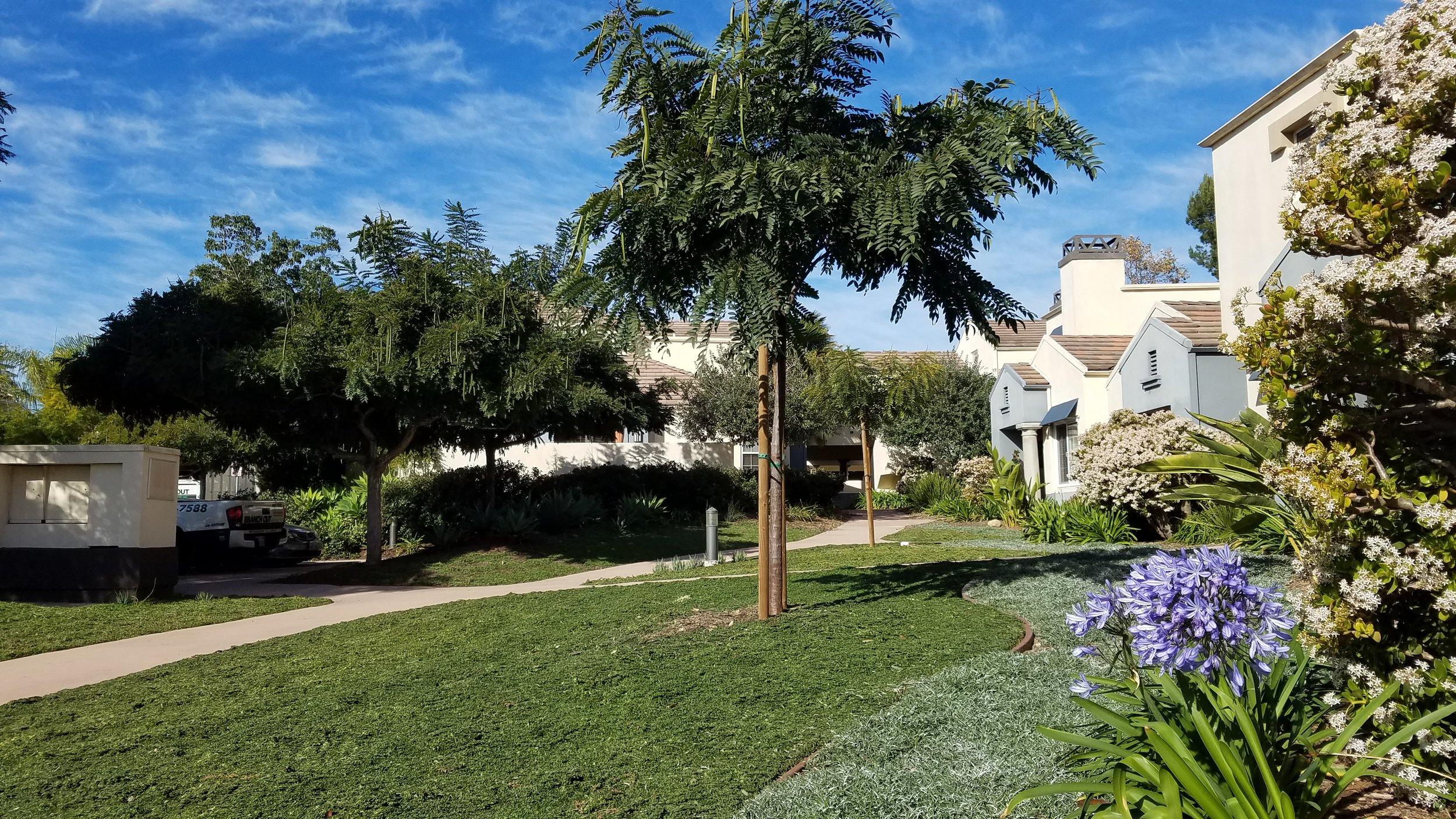 Franciscan Villas HOA