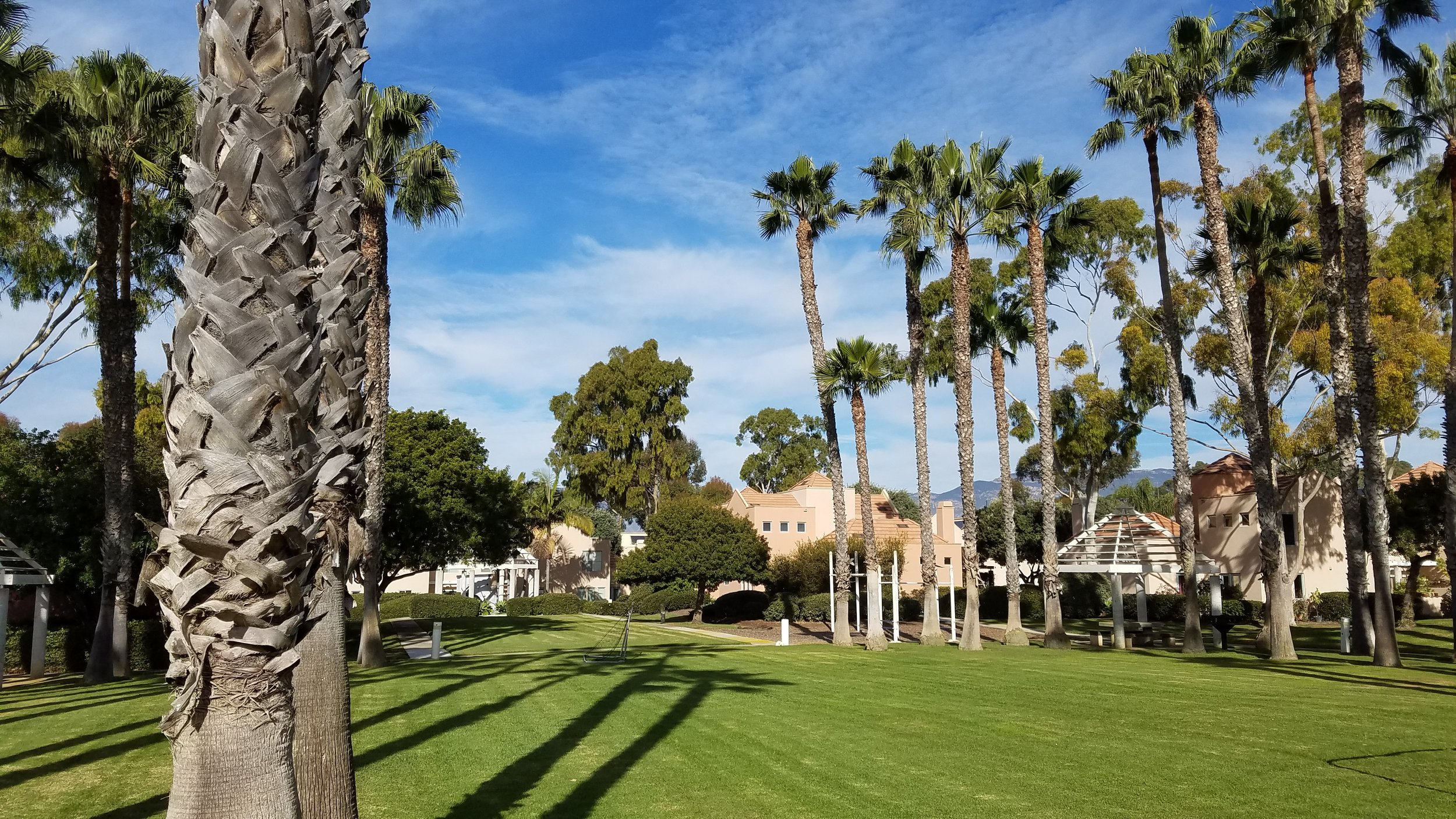 West Campus Point HOA
