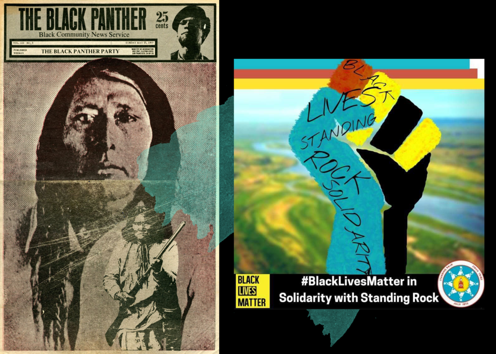 black-panther-native-resist-cm2.png