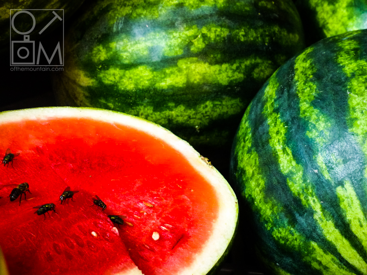 Philly - Italian Market - Watermelons