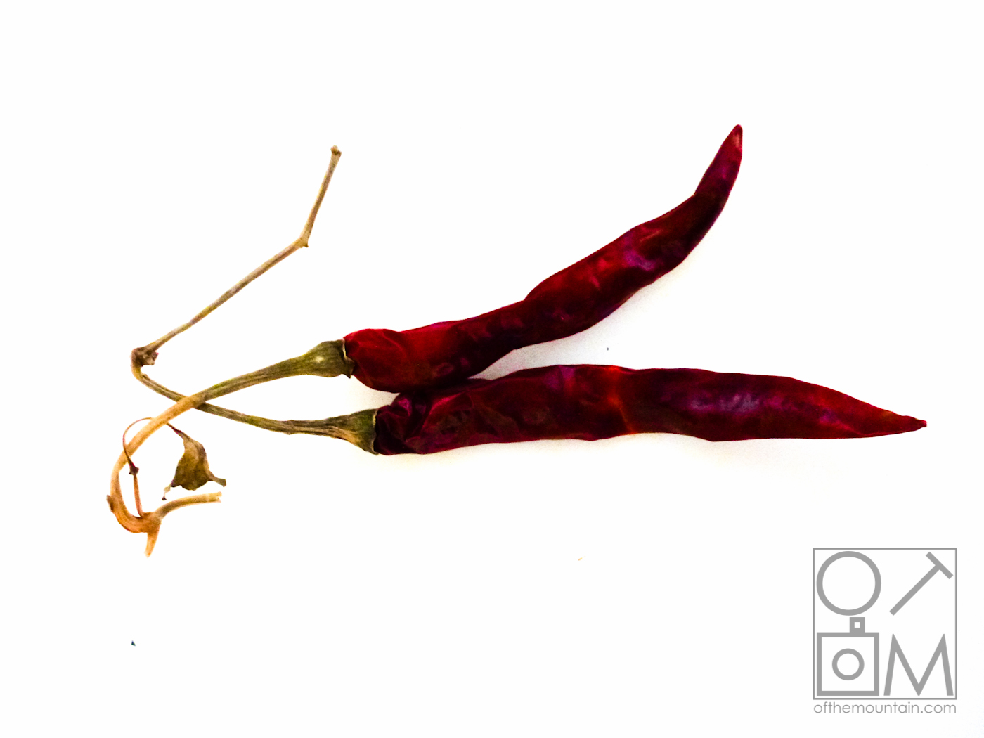 Cooking - Chilis Red