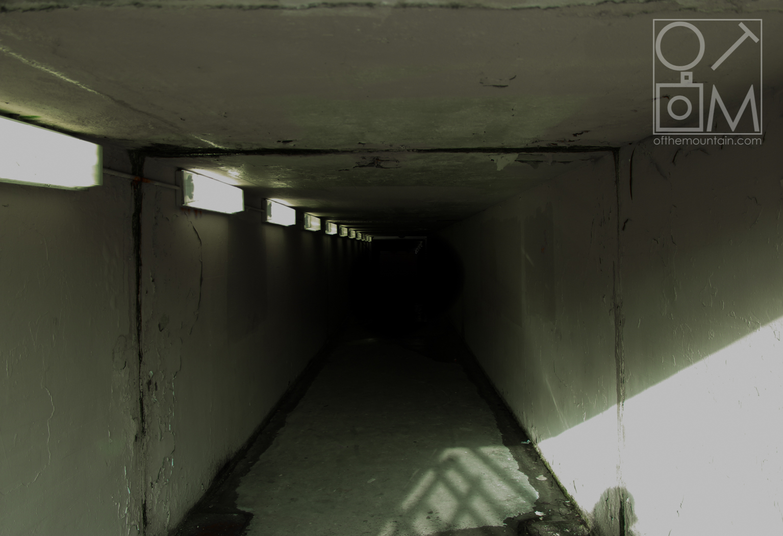 Wissahickon - Tunnel