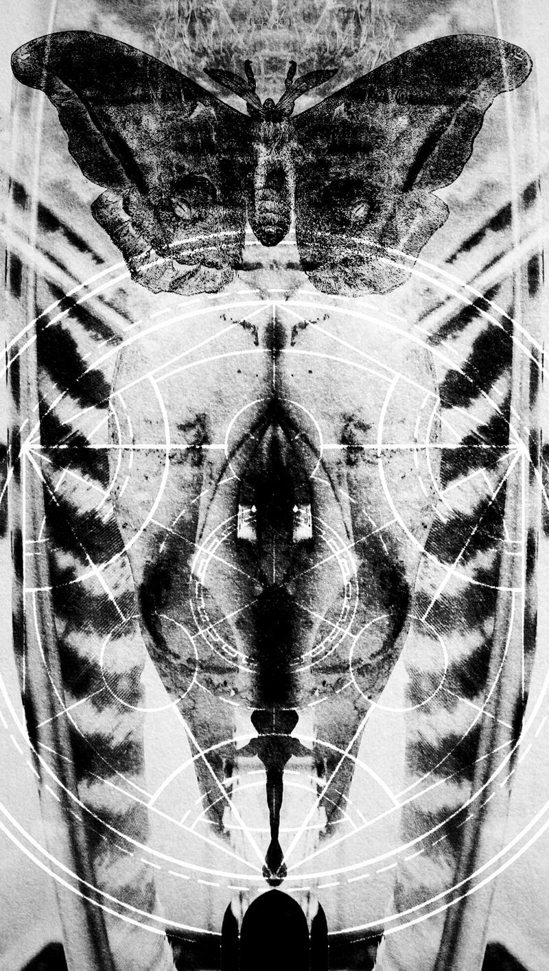 Metamorphine-Design-(800-px).jpg